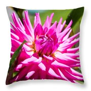 The Lady Is A Dahlia Throw Pillow
