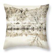 The Lake #47 Throw Pillow