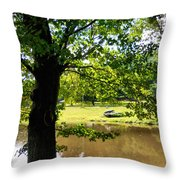 The Lake In The Park Throw Pillow