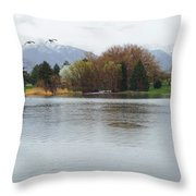 The Lake View  Throw Pillow