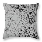 The Lambs Of God In Trial Throw Pillow