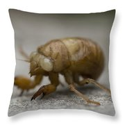 The Larval Stage Of A Locust Throw Pillow