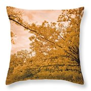 The Last Great Battle... Throw Pillow