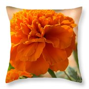 The Last Marigold Throw Pillow