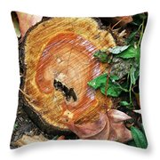 The Last Of The Old Yew Throw Pillow