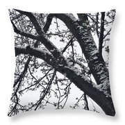 The Last Snow Fall Throw Pillow