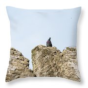 The Last Toll Taker Throw Pillow