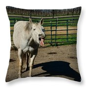 The Laughing Horse Throw Pillow