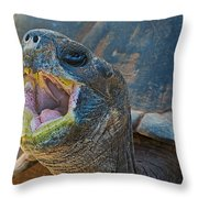 The Laughing Tortoise Throw Pillow