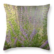 The Lavender Outside Her Window Throw Pillow