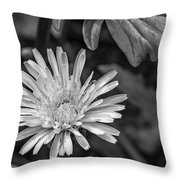 The Lawn King Bw Throw Pillow