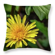 The Lawn King Throw Pillow
