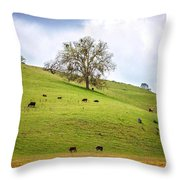 The Lazy Days Of Spring Throw Pillow