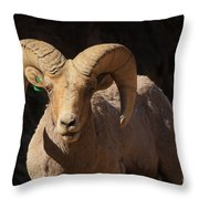 The Leader Of The Pack Throw Pillow