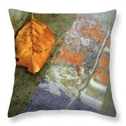 The Leaf And The Reflections Throw Pillow