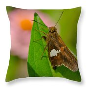 The Leaf Climber Throw Pillow