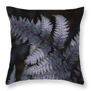 The Leaf Of A Japanese Painted Fern Throw Pillow
