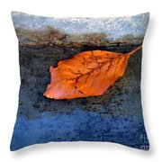 The Leaf On The Stairs Throw Pillow