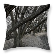 The Leaning Boughs Throw Pillow