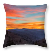 The Leaves Are Gone But The Beauty Is There. Throw Pillow