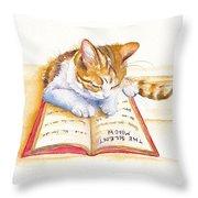 The Lesson Throw Pillow
