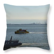 The Liberty Throw Pillow
