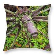 The Lichen Wheel Throw Pillow