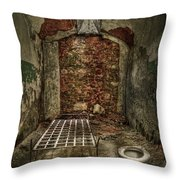 The Life Of Crime Throw Pillow