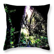 The Light At The End Of The Triangle Throw Pillow by Eikoni Images