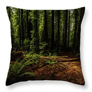 The Light In The Forest No. 2 Throw Pillow