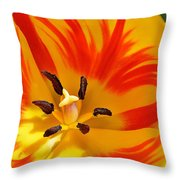 The Light Inside Throw Pillow