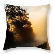 The Light. Throw Pillow by Itai Minovitz
