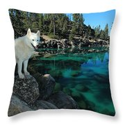 The Light Of Lake Tahoe Throw Pillow
