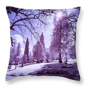 The Light Of River View Throw Pillow