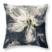 The Light Of Spring Petals Throw Pillow