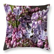 The Lilac  Throw Pillow