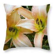 The Lillies Have It Throw Pillow