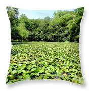 The Lily Pond #1 Throw Pillow
