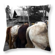 The Line Up Throw Pillow by Barry C Donovan