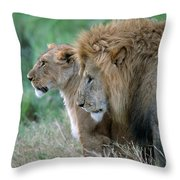 The Lion And His Lioness Throw Pillow