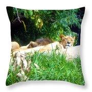 The Lion Awakes Throw Pillow