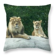 The Lions Throw Pillow