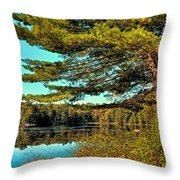 The Little Known Cary Lake Throw Pillow
