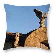 The Little Lion And The Soaring Eagle Who Watches Over Him Throw Pillow