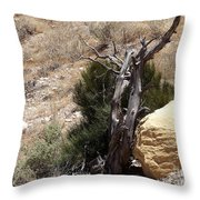 The Living And The Dead Throw Pillow