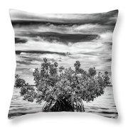 The Lone Mangrove Throw Pillow