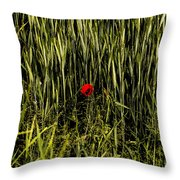 The Loneliness Of A Poppy Throw Pillow