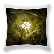 The Lonely Daisy Throw Pillow