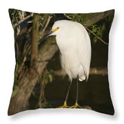 The Lonely Snowy Egret Throw Pillow