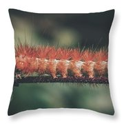 The Long Stride Throw Pillow